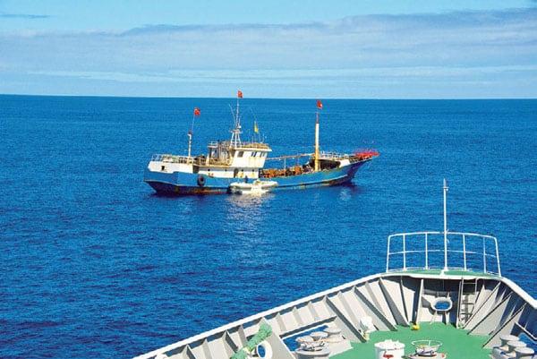 赤サンゴ密猟は隠れ蓑…中国漁船200隻「正体は海上民兵」