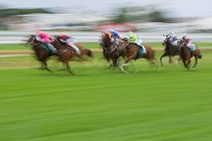 【数字は踊る】競争馬は億単位のギャンブル