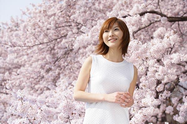 あと20年で花見ができなくなる!? 桜を襲う恐ろしい外来生物