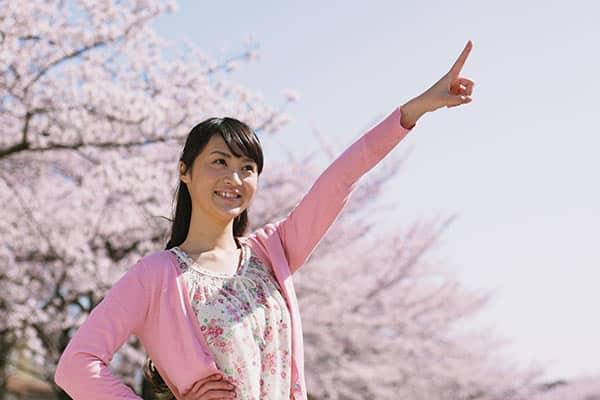 日本でいちばん花見をしない「沖縄県」その理由は?