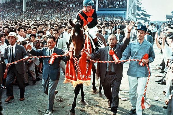 『1964年、三冠馬シンザン(写真:JRA)』