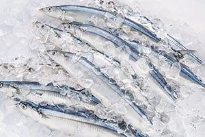 25年間の調査で判明「魚を食べればうつ病になりにくい」!