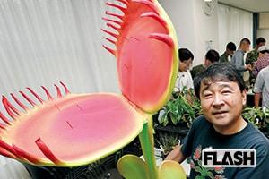 『マツコの知らない世界』マツコ食虫植物に興奮する