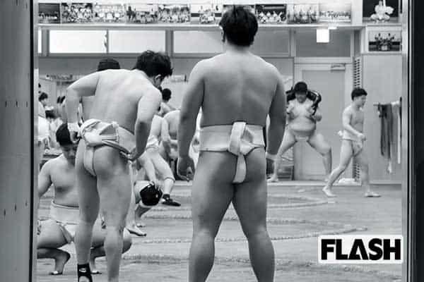 二宮敦人が見た「日体大相撲部」男の肌に突っ込んでいくの嫌じゃない?