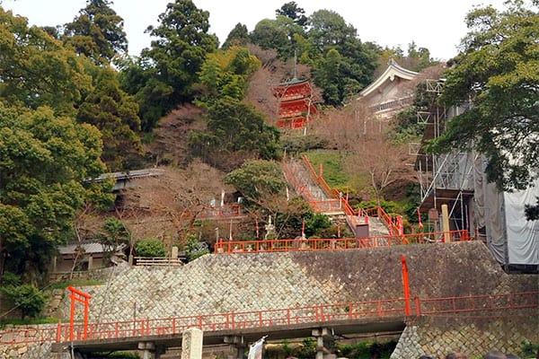 【目指せ不思議スポット】琵琶湖に浮かぶ神秘の島
