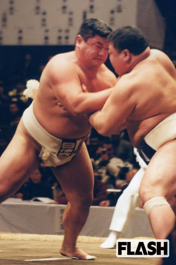「嘉風」超ロングインタビュー「僕にとって相撲は趣味です」