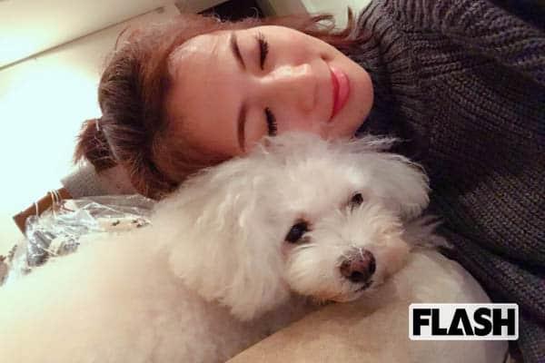 安田美沙子『名犬ラッシー』を読んで犬と暮らすのが夢だった