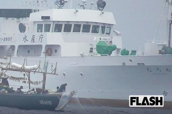水産庁船の前で密漁「日本のスルメイカ」が獲り尽くされる