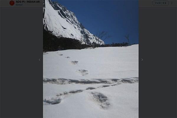 インドでイエティの足跡発見…知られざる日本人の雪男遭遇史
