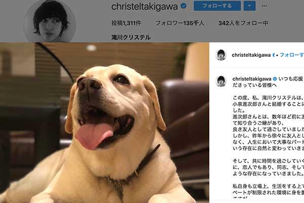 滝川クリステル、小泉進次郎とのデートは保護犬アリスとともに