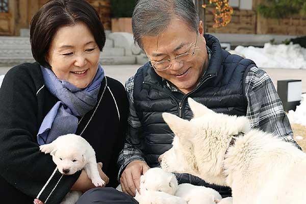 韓国ムン・ジェイン大統領、ワンちゃんと猫ちゃんが大好き