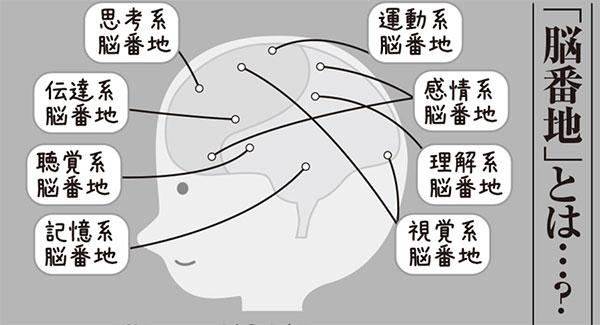 能力値を上げる「大人の脳ドリルvol.1」使っていない脳を鍛えろ