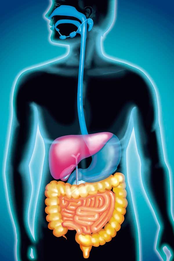 いまこそ知りたい「肝臓の真実」健康診断の注目数値は「A/G比」