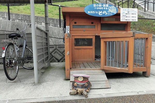あつまれ!「どうぶつの駅長さん」そらちゃん/旧余部鉄橋・空の駅(兵庫)