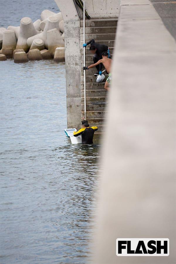 サザエ、アワビが根こそぎ…葉山漁協を苦しめる極悪密漁団撮った
