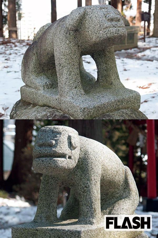 日本全国「愛され狛犬」ゆる顔にカッパやモアイ像似…ご利益やいかに?