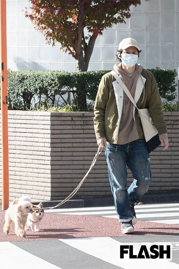 アンジャッシュ渡部&児嶋に菅野美穂…芸能人の「セレブわんこ」一番人気はトイプードル
