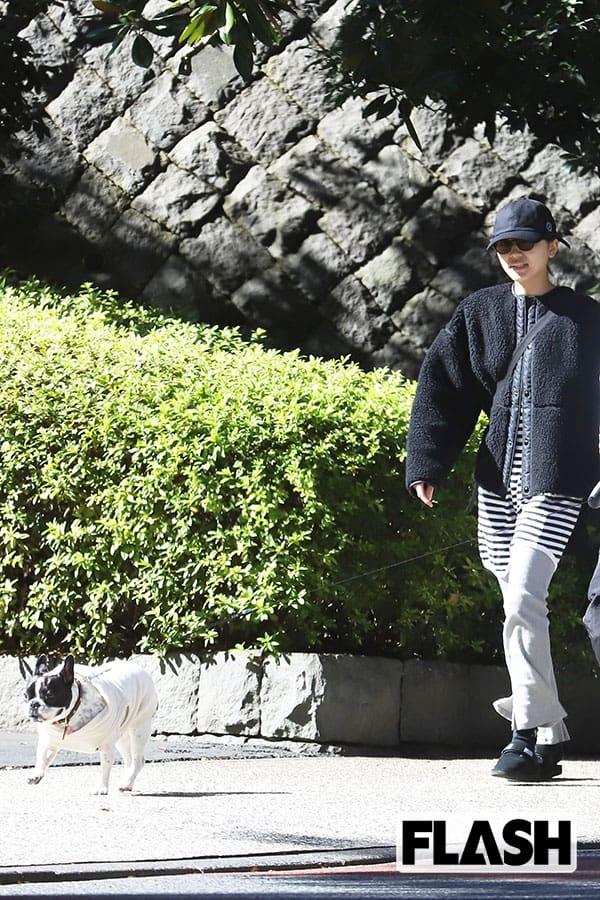 川口春奈の「セレブわんこ」推定価格は75万円…ペットのために引っ越した!