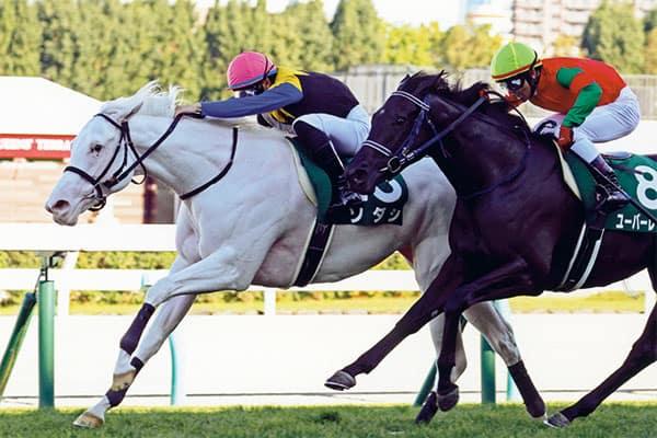 桜花賞の主役は2歳女王…奇跡の白馬「ソダシ」世界初のクラシック制覇へ