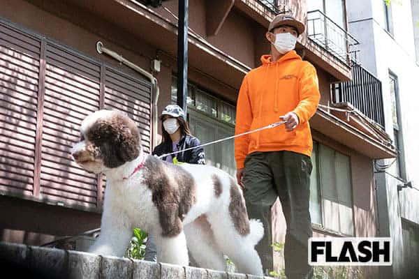 木村拓哉のインスタが「犬アカ」化と話題…忙しくても散歩姿は連投