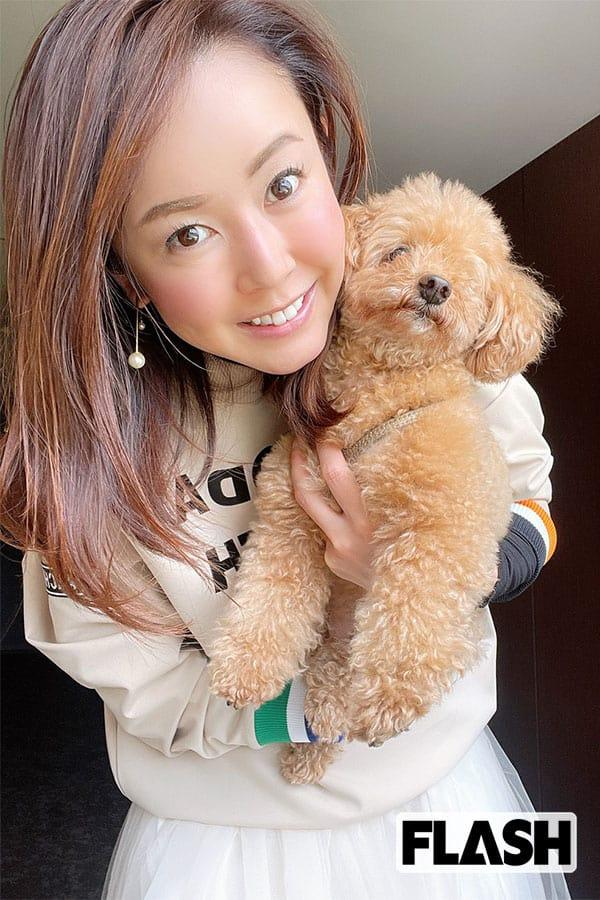 女子アナ宮崎宣子の「ドツボ脱出」犬を飼いたいのに犬好きの母が納得しない