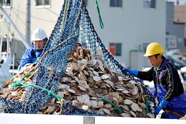 47都道府県「金持ちが住む街・住まない街」北海道猿払村や山梨県忍野村が高収入の理由
